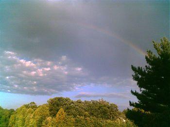 Rainbow over lake via cellphone